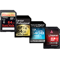 See what's in the SDHC Cards category.